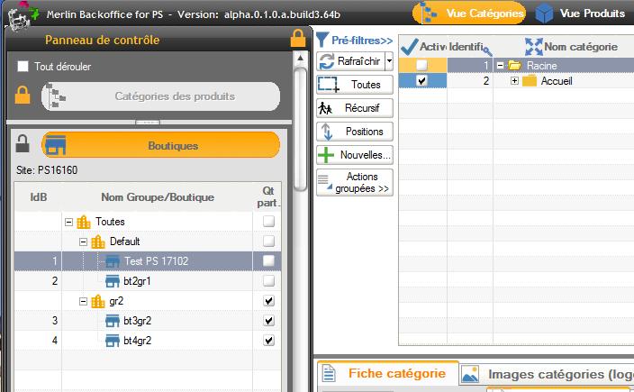 Vue du module en mode gestion des catégories