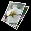 Téléchargement rapide des photos dans les fiches produit PrestaShop